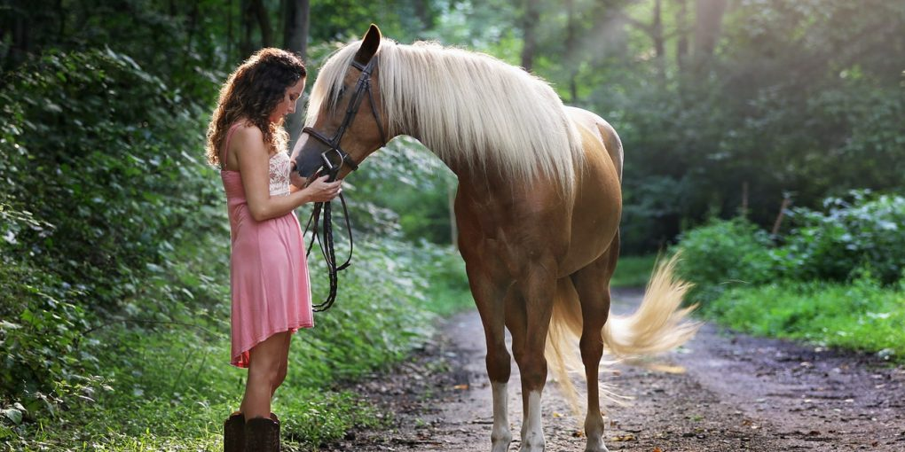 8 Ways To Easily Reduce Your Horse's Stress